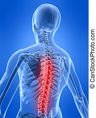 backache illustration - 3d rendered illustration of a human ...