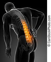Backache male - 3d rendered illustration - backache male
