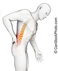 Backache male