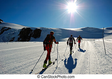 backcountry, skiers