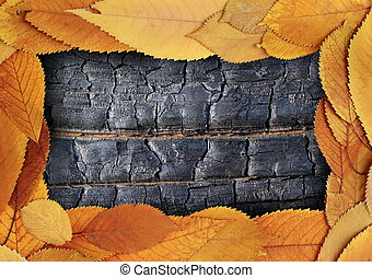 backdrop with gold leaves and burnt wood