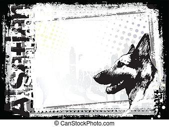 backgorund, cão, alsaciano