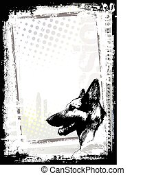 backgorund, cartaz, cão, alsaciano