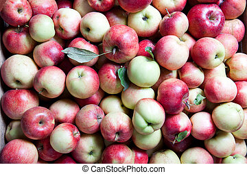 backgound from apples