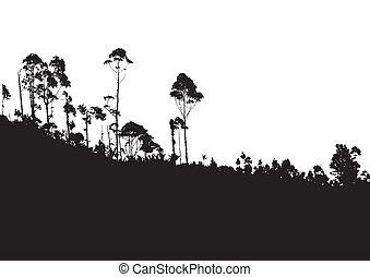 backgro, 산, 나무, 열대적인