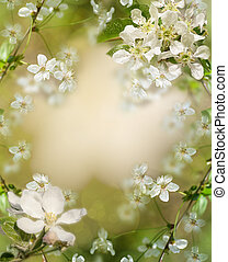 background Apple tree in blossom