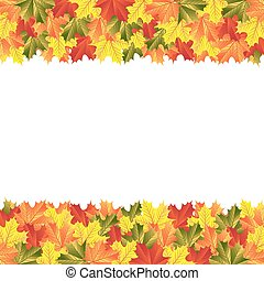 background autumn maple leaves
