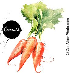 background?, carrots., mano, acquarello, disegnato, bianco,...