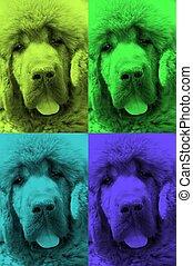 background dog 3