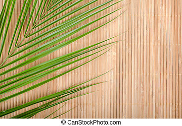 Background from a bamboo rug and palm tree leaf