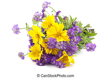 background from a bouquet of wild flowers closeup