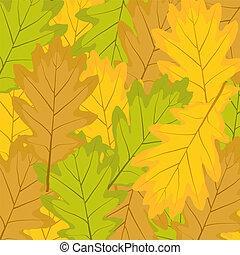 autumn leaves of oak