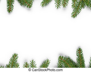 background from fir twigs with shadow, on white