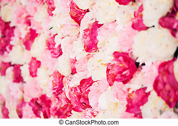background full of white and pink peonies