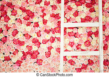 background full of white and pink roses and old ladder