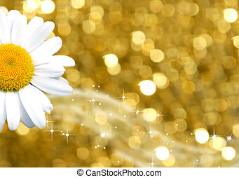 background gold and daisy - golden background with daisy...