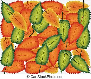 Background group autumn orange leaves -vector