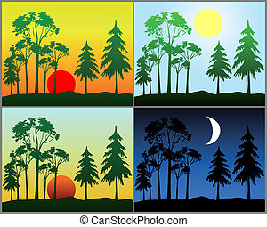 Background in the form of a period of the day with a forest ...