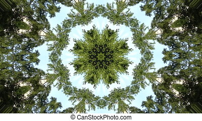 Background kaleodoscope green trees - Abstract pattern...