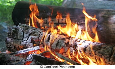 Background of a Fire, a Log Burns. Burning logs in orange...