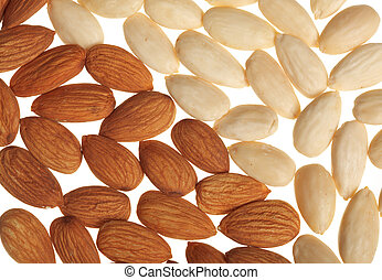 Background of almonds isolated