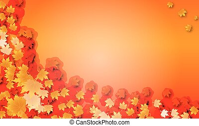 background of autumn maple leaves