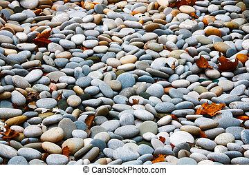 Background of beautiful pebbles on the beach of the Pacific Ocean coast