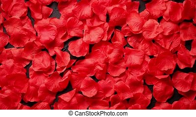 Background of beautiful red rose petals. Top view -...