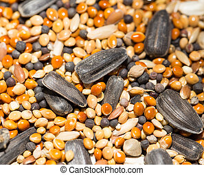 background of birdseed. close