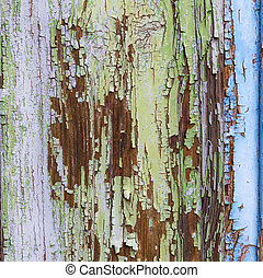 colorful wet wooden facade with peeling color