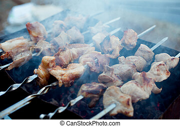 Background of crispy grilled meat and onion kebabs risknut...