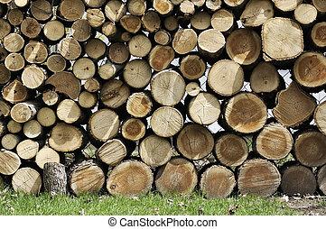 Cut Wood Logs