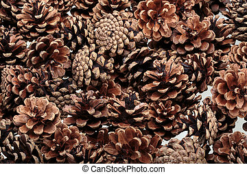 Background of dried natural pine cones. Conceptual of the...