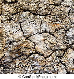 Background of dry cracked soil surface.