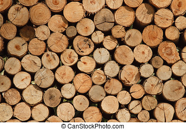 Background of Dry Firewood Logs - Background of dry Firewood...