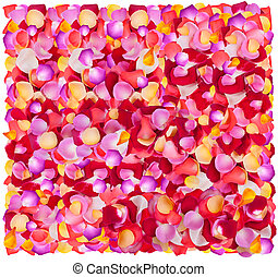 Background of fresh colorful flower petals