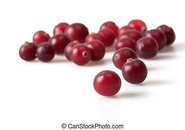 Background of frozen cranberries