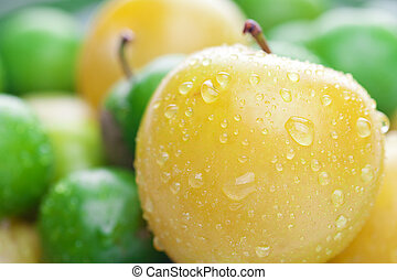 background of green and yellow plum
