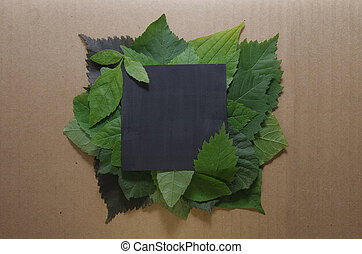 Background of green leaves with a paper