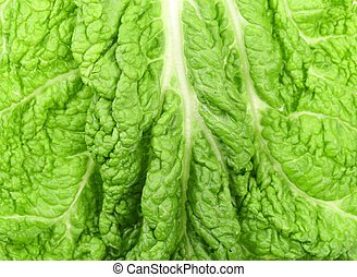 Background of leaf chinese cabbage.