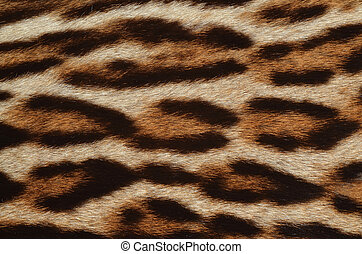 background of leopard fur texture
