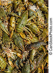 Background of the heap of live crawfish