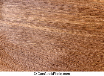 Background of long, smooth, well-groomed hair - Background...