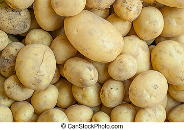 Background of many yellow potatoes on market stall
