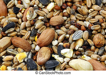 mixed bird feed  - background of mixed bird feed