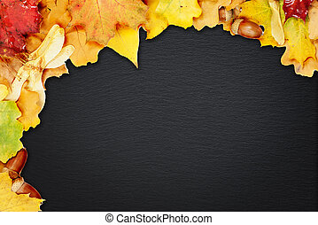 Background of multicolored leaves