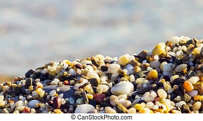 Background Of Multicolored Sea Pebbles On The Beach