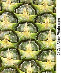 Background of pineapple skin. Macro.