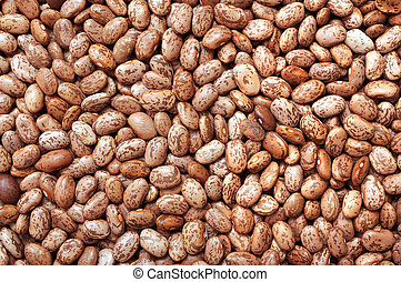 background of pinto beans
