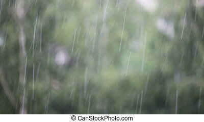 Background of rain drops close-up
